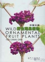 Wild Ornamental Fruit Plants from Yunnan China