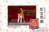 Treasures of the Palace Museum: Cats in the Palace Museum