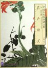 Selected Ancient Chinese Paintings: Flowers Painting Album (Zhao Zhiqian [Qing Dynasty])