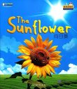 Cool Panda Chinese Big Book for Kids: Weather & Seasons - The Sunflower