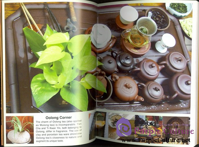 Sample pages of Oolong Tea (ISBN:9787508517445)