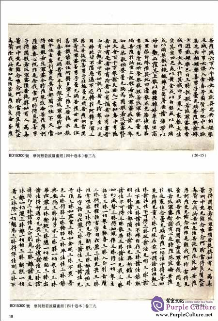 Sample pages of Dunhuang Literature in National Library Section 142 (ISBN:9787501337040)