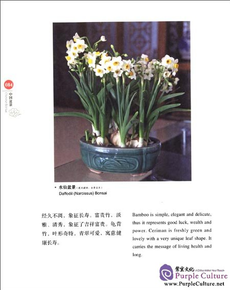 Sample pages of Chinese Red: Chinese Bonsai (ISBN:9787546134222)