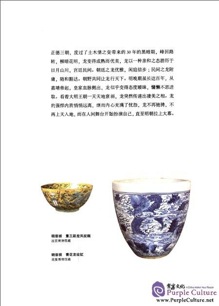Sample pages of Patterns on Porcelain (2 vols) (ISBN:9787513404433)