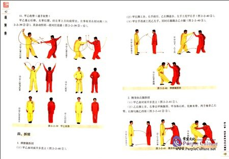 Sample pages of Textbook Series of Chinese Wushu Duanwei System: Tongbiquan (with DVD) (ISBN:9787040258332)