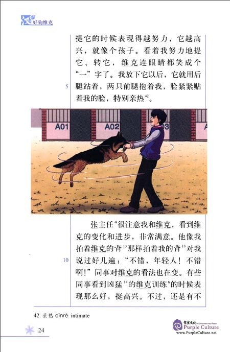 Sample pages of Chinese Breeze Graded Reader Series: Level 4 1100 Words Level - Vick the Good Dog (ISBN:9787301275627)