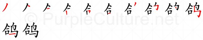 Stroke order image for Chinese character 鸽