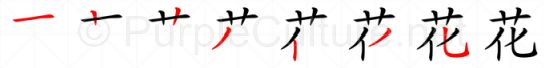 Stroke order image for Chinese character 花