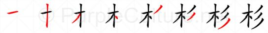 Stroke order image for Chinese character 杉