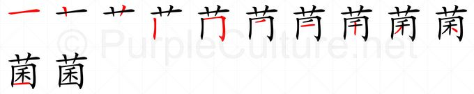 Stroke order image for Chinese character 菌