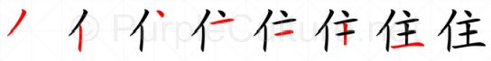 Stroke order image for Chinese character 住