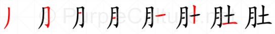 Stroke order image for Chinese character 肚
