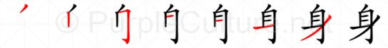 Stroke order image for Chinese character 身